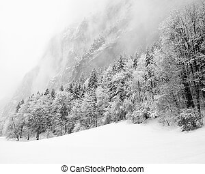 Truemmelbach Falls Lauterbrunnen, Switzerland - Winter 2009...
