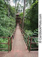 watchtower - watch tower in forest