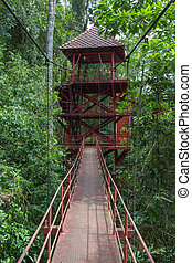 watchtower in the forest for looking wildlife animal and...