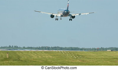 Airplane Landing On Runway - Airplane with two engines...