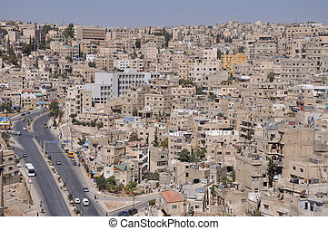 Amman is the capital and largest city of the Hashemite...