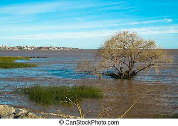 Colonia del Sacramento - Colonia on the calm waters of Rio...