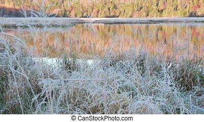 Autumn Lake - Lake on an autumn morning