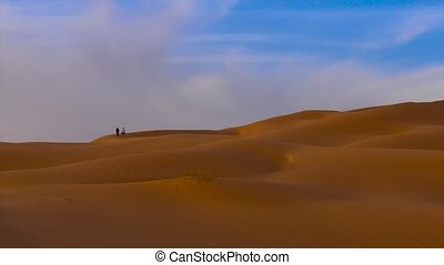Sahara Desert landscape - Typical landscape of the Sahara...