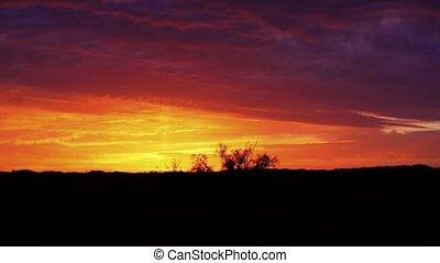 Sahara desert, wonderful sunset.