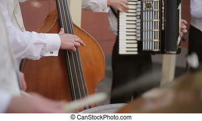 Musical quartet playing. Musician playing contrabass....