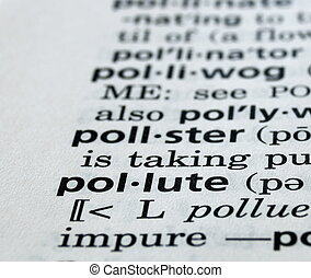 Pollute Defined