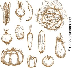 Isolated vegetables in retro sketched style