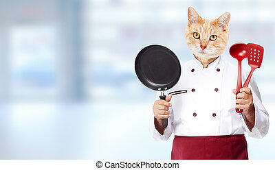 Cat chef - Ginger cat chef over abstract blue background