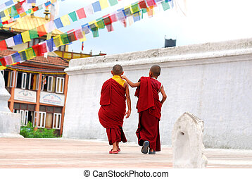 Two Tibetan Children Buddhist Monks walking