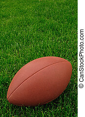 Football on a grass playing field, vertical, copy space
