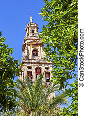 Torre del Aliminar Tower Trees Mezquita Cordoba Spain