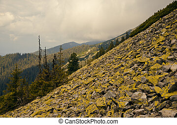 Carpathian mountains - Landscape in the Carpathian mountains