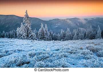 Colorful winter sunset in the frosty mountain valley