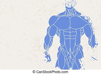 silhouette of a mans torso - Fitness background of...