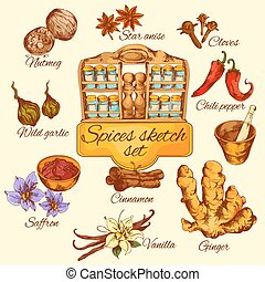 Spices Sketch Colored - Spices sketch colored set with chili...