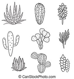 Succulents plant vector set. Botanical black and white...