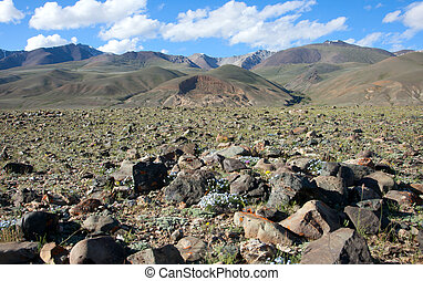 Landslide in the mountains. new Landscape