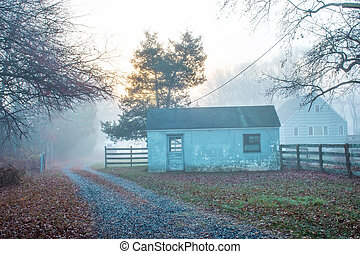 Foggy Rural Morning - Dense fog in early morning of this...