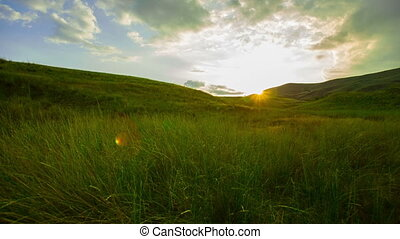 Green Meadow at Sunset - beautiful green meadow at sunset