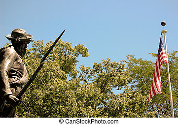 Confederate Soldier Views American Flag