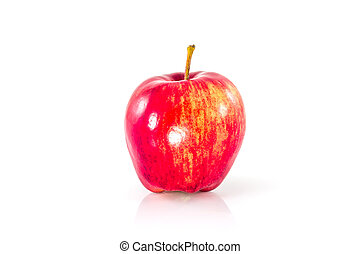 red apple on a white