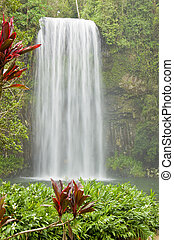 Beautiful waterfall in tropical Australia - A beautiful...