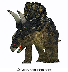 Diceratops on White - Diceratops is a herbivorous...