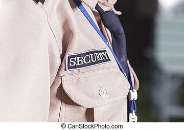 セキュリティー, 監視