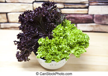 Green new lollo rossoand and lettuce of salad in a pot on a...