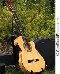 Nature\'s Guitar