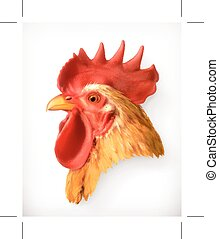 Rooster head, realistic vector illustration