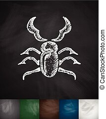 stag-beetle icon Hand drawn vector illustration Chalkboard...