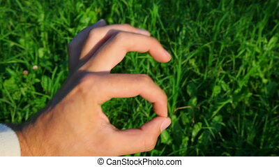 okay hand sign on green grass background