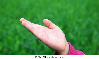 victory hand sign by little girl on green grass background