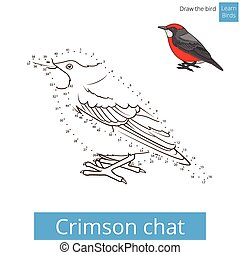 Crimson chat bird learn to draw vector - Crimson chat learn...