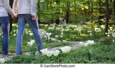 couple walking in the green park amoung tulips
