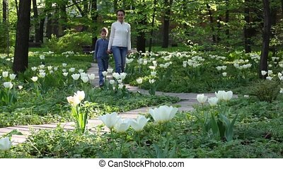 Mother and kid walks in the park amoung tulips