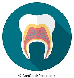 Flat design tooth icon