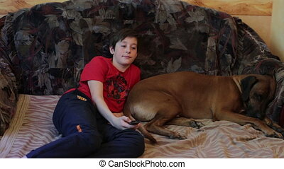 Boy and Dog Lieing on Sofa and Watching TV - Boy with Dog...