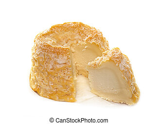 a Langres cheese - Langres cheese in front of white...