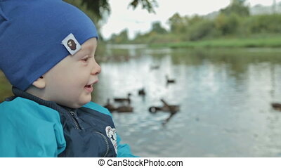 Baby boy feeding ducks at autumn
