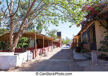 Street in Peruvian Pisco Zone - Street in Ica, Peru where...