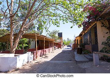 Street in Peruvian Pisco Zone - Street in Ica, Peru where...