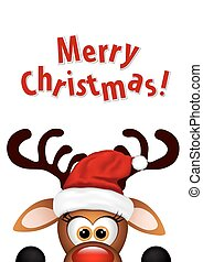 Funny Christmas Reindeer on a white background