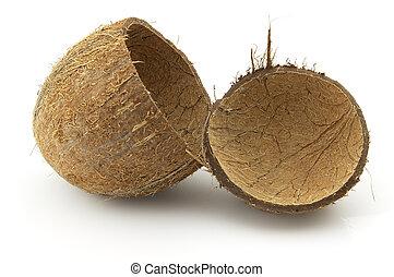 coco, concha