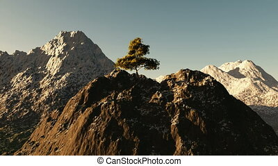 Aerial shot of mountain peak with tree