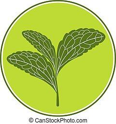 Stevia logo illustration. - Stevia logo tempate isolated on...