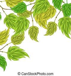 hojas, saludo, estilizado, verde, Plano de fondo, tarjetas