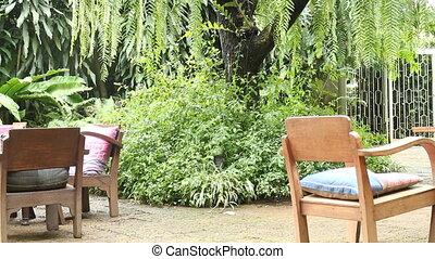 Big tree in tropical garden - Big tree in tropical garden,...